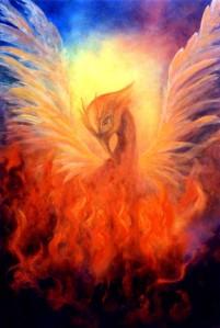 Phoenix-Rising7